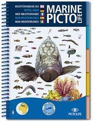 Marine Picto Life -  Méditerranée