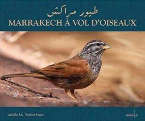 Marrakech à Vol d'Oiseaux