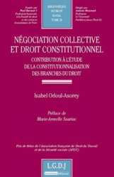 Négociation collective et droit constitutionnel. Contribution à l'étude de la constitutionnalisation des branches du droit