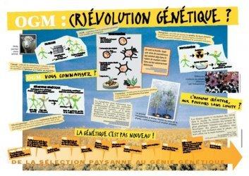 OGM : (r)évolution génétique