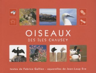 Oiseaux des îles Chausey