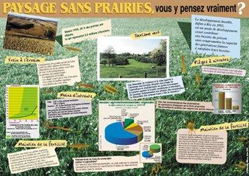 Paysages sans prairies, vous y pensez vraiment ? (édition 2008)