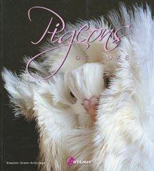 Pigeons de luxe