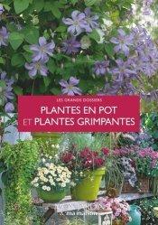 Plantes en pot et plantes grimpantes