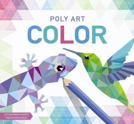 Poly art color
