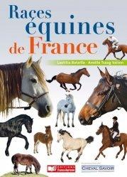 Races équines de France, chevaux, poneys et ânes