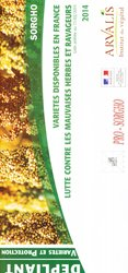 Sorgho variétés disponibles en France