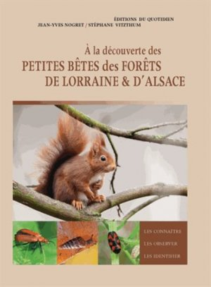 A la découverte des petites bêtes des forêts de Lorraine et d'Alsace - du quotidien - 9782371640306 -