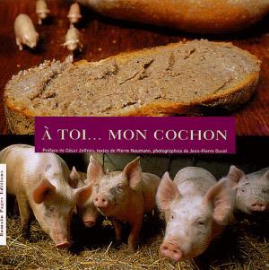 À toi... mon cochon - romain pages - 9782843501029 -