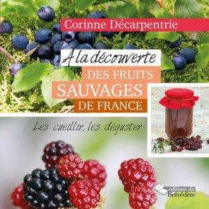 A la découverte des fruits sauvages de France - du belvedere - 9782884194778 -