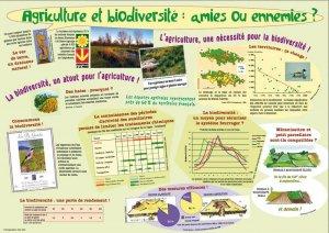Agriculture et biodiversité : amies ou ennemies ? - educagri - 9782844445711