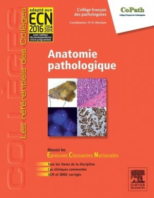 Urologie-elsevier / masson-9782294719165