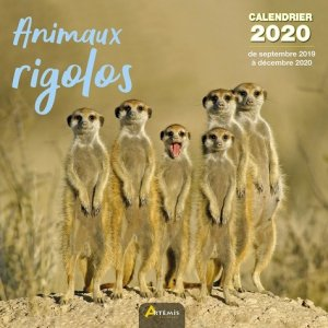Animaux rigolos calendrier 2020 - artemis - 9782816014891