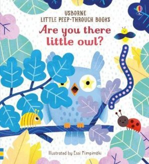are you there little owl ? - usborne - 9781474966863 -
