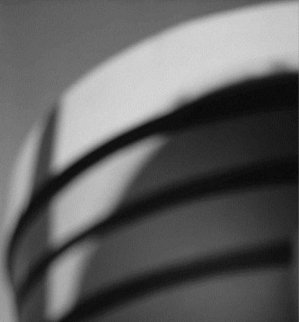 Architecture - xavier barral - 9782365112420 -