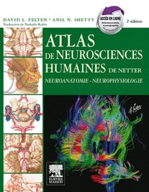 Atlas de neurosciences humaines de Netter - elsevier / masson - 9782294704604 -