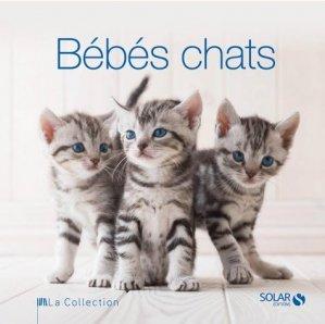 Bébés chats - solar  - 9782263059377 -