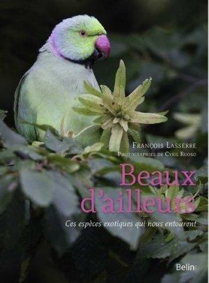 Beaux d'ailleurs - belin - 9782410017878 -