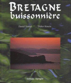Bretagne buissonnière - apogee - 9782843980428 -