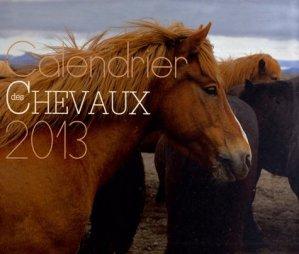 Calendrier des chevaux 2013 - Larousse - 9782035854582 -