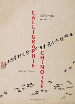 Calligraphie chinoise - actes sud  - 9782330129514 -