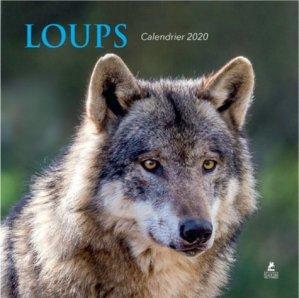 Calendrier loups - Place des Victoires - 9782809917185 -