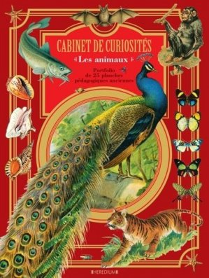 Cabinet de curiosités : les animaux - heredium - 9782810422036 -