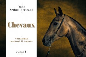 Calendrier 52 semaines Chevaux - du chene - 9782812316982 -
