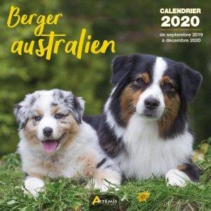 Berger australien - Artémis - 9782816014938 -