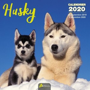 Husky - Artémis - 9782816014983 -