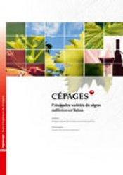 Cépages: principales variétés de vigne cultivées en Suisse - amtra - 2000040503774 -