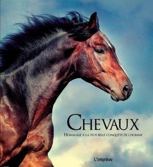 Chevaux - de l'imprevu - 2301029507845 -