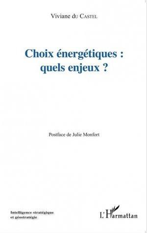 Choix énergétiques : quels enjeux ? - l'harmattan - 9782343042350 -