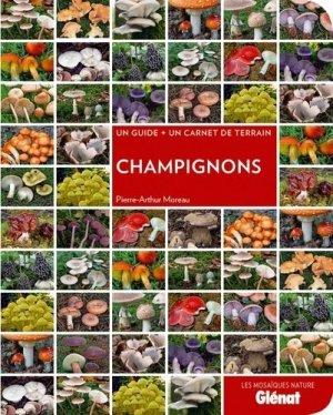 Champignons - glenat - 9782344003145