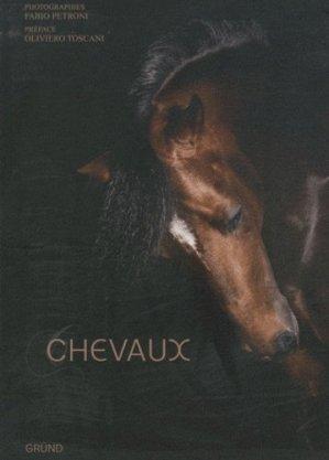 Chevaux - grund - 9782700029710 -