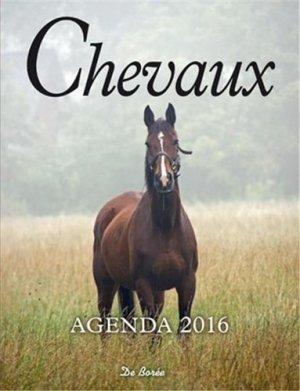 Chevaux agenda 2016 - de boree - 9782812915598 -