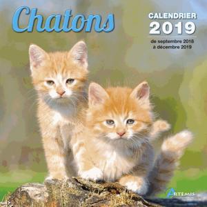 Chatons : calendrier 2019 : de septembre 2018 à décembre 2019 - artemis - 9782816013184 -