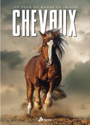 Chevaux : un tour du monde en images - artemis - 9782816014211 -