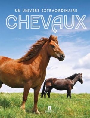 Chevaux : un univers extraordinaire - christine bonneton - 9782862537344 -