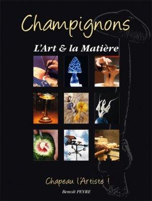 Champignons, l'art et la matière - benoît peyre editions - 9782953287516 -