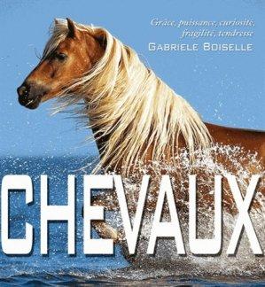 Chevaux - white star - 9788861124684 -