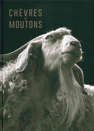 Chèvres ou moutons - 5 continents - 9788874398416 -