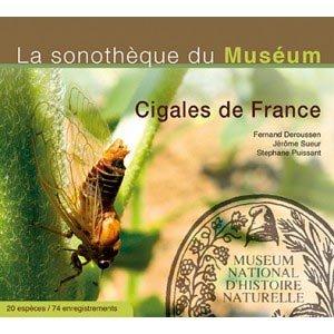 Cigales de France - chiff chaff - 3770001513416 -