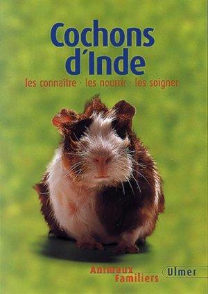 Cochon d'Inde - ulmer - 9782841381708 -