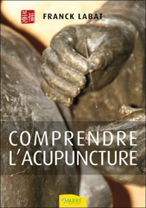 Comprendre l'acupuncture - ambre  - 9782940500000 -