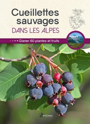 Cueillettes sauvages dans les Alpes - Artémis - 9782816009088 -