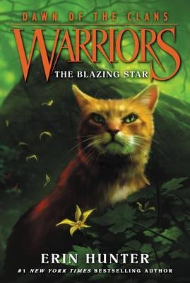 DAWN OF THE CLANS 4 THE BLAZING STAR  - harpercollins - 9780062410030 -