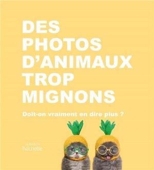 Des photos d'animaux trop mignons - Hachette - 9782017041191 -