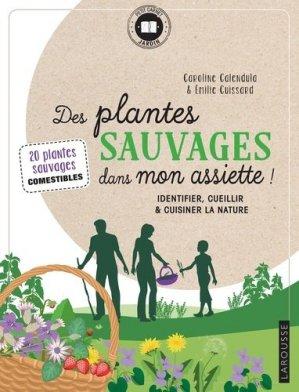 Des plantes sauvages dans mon assiette ! - larousse - 9782035968371