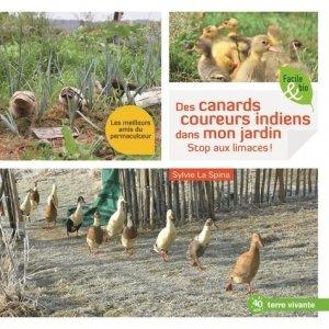 Des canards coureurs indiens dans mon jardin - terre vivante - 9782360985111 -